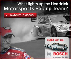 Bosch_Hendrick 300x2501