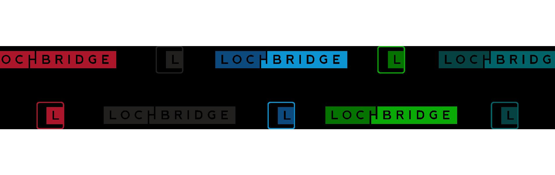 LB_06_LogoOptions
